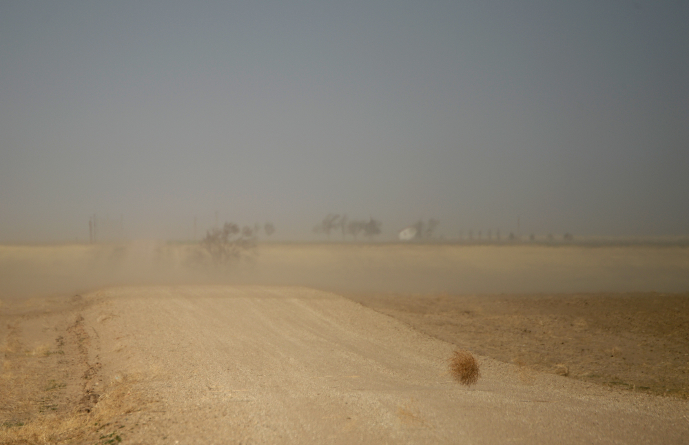 . SPRINGFIELD, CO - APRIL 01: A tumbleweed blows across a county road near Springfield, Tuesday, April 01, 2014. Massive dust Storms that bedeviled the region last year are back this spring, stirring memories of the Dust Bowl in the 1930s. (Photo by RJ Sangosti/The Denver Post)