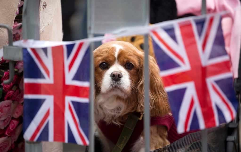 . Bunting is pictured outside Windsor Castle, west of London, on April 21, 2016, as Britain\'s Queen Elizabeth II celebrates her 90th birthday. Britain celebrates Queen Elizabeth II\'s 90th birthday on Thursday, with her eldest son Prince Charles paying tribute in a special radio broadcast and Prime Minister David Cameron leading a parliamentary homage. / AFP PHOTO / JUSTIN TALLIS/AFP/Getty Images