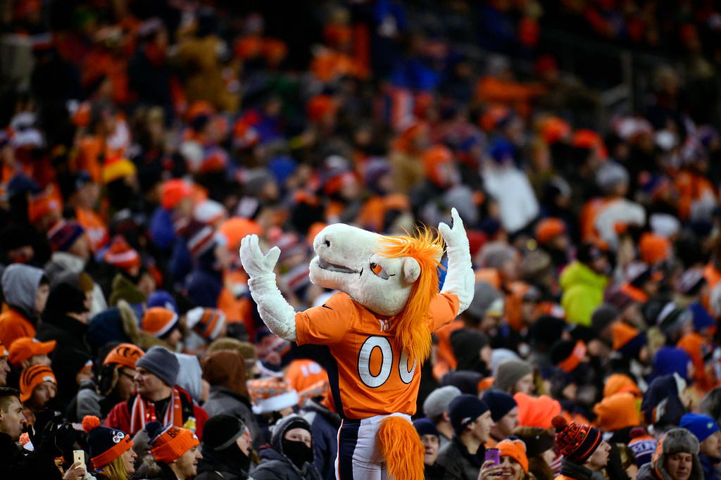 . DENVER, CO - DECEMBER 28: Mascot Miles tries to get the crowd going during the third quarter of the Denver Broncos Cincinnati Bengals game December 28, 2015 at Sports Authority Field at Mile High Stadium. (Photo By Eric Lutzens/The Denver Post)