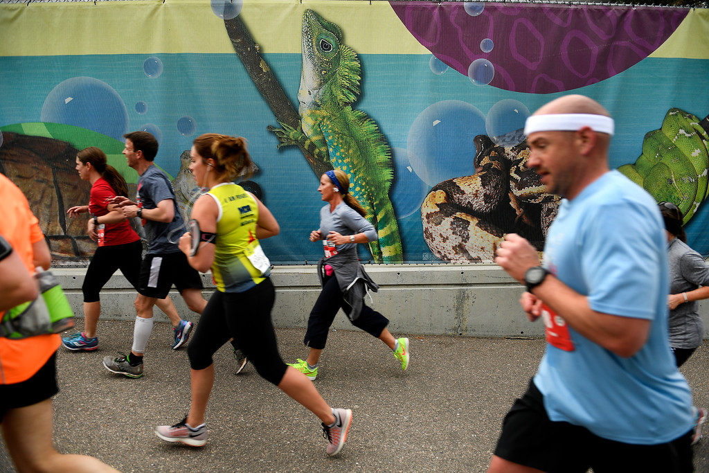 . DENVER, CO - MAY 15: Half marathon runners run past a mural inside the Denver Zoo, which was around the three mile marker of the 11th annual Colfax Half Marathon on May 15, 2016 in Denver, Colorado.  Thousands of runners took part in the annual springtime race which included a marathon, a marathon relay,  a half marathon and the urban 10 miler.  (Photo by Helen H. Richardson/The Denver Post)