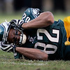 NFL Concussions Football