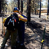 CD20BLACKFORESTFIRE__ADO2383