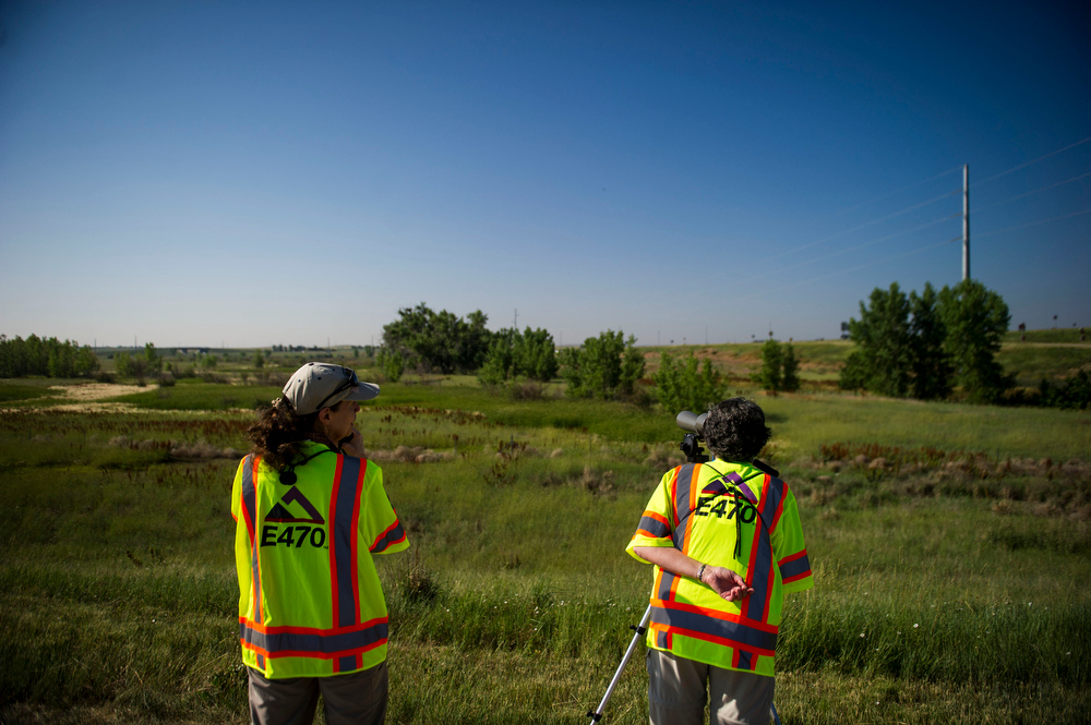 . Volunteers Karen Metz and Josette Mastra look through binoculars surveying a female eaglet along E120th Avenue near, E-470 where an eagles nest is located on Thursday, July 03, 2014 in Commerce City, CO.  Volunteers  rotate in shifts to keep watch over the baby eagle, as it is expected to take flight soon, and it\'s nests proximity to E-470 tollway is worrisome. (Photo by Kent Nishimura/The Denver Post)
