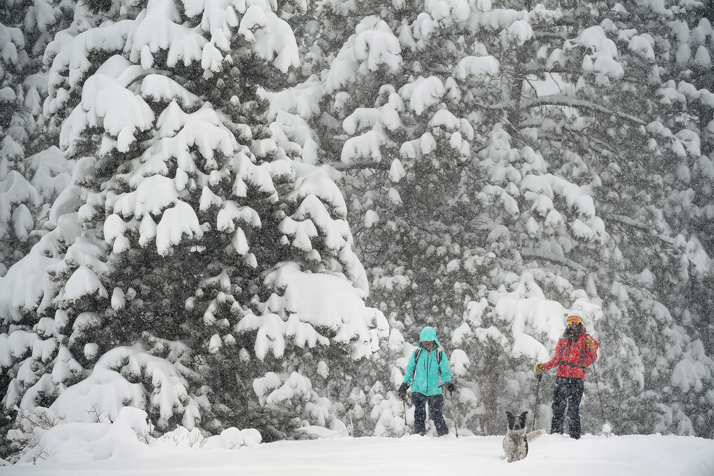 . Kestrel Hanson Neathawk, left in blue, Sara Born, in red, and her dog Oliver get first tracks along Ridge Road as they enjoy the almost 2 feet of snow on April 16, 2016 in Nederland, Colorado. A spring storm dumped more than 2 feet of snow in the foothills and more is expected overnight.  (Photo by Helen H. Richardson/The Denver Post)