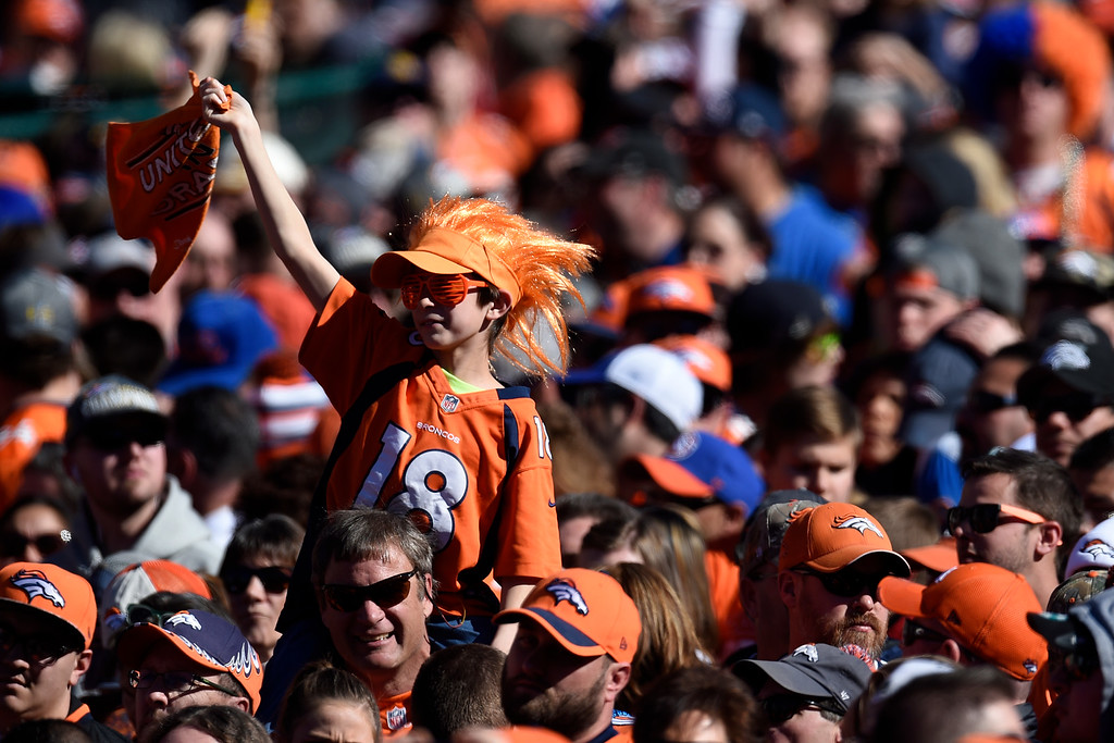 . Fans cheer in Civic Center Park during the Denver Broncos Super Bowl championship celebration and parade on Tuesday February 9, 2016. (Photo By AAron Ontiveroz/The Denver Post)