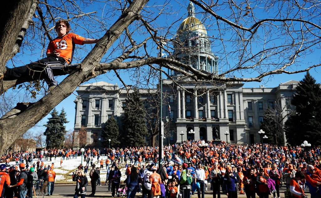 . The Denver Broncos were celebrating their Super Bowl victory with a parade through the streets of Denver on Tuesday, February 09, 2016. 15-year-old Tyler Edwards sits in a tree with the capitol filled with fans with the Civic Center rally.  (Photo by Cyrus McCrimmon/ The Denver Post)