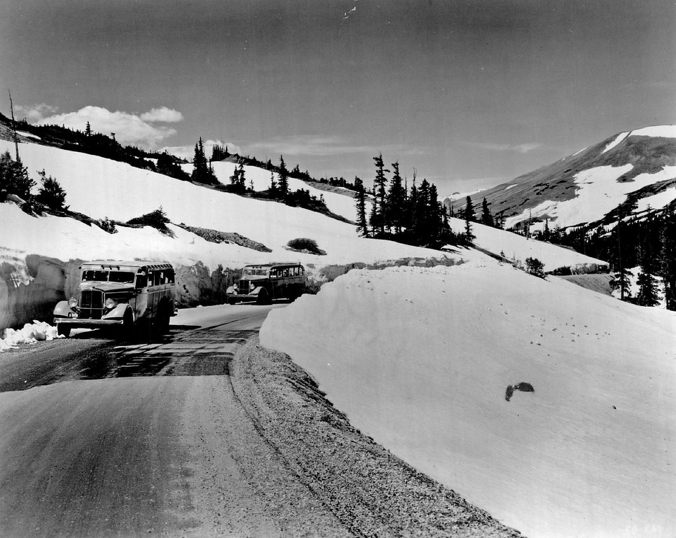 . A Midsummer picture along the Trail Ridge Road in Colorado\'s Rocky Mountain National Park shows a tour bus fleet circa. 1936. Credit: Union Pacific Railroad Photo