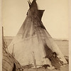 A young Oglala girl sitting in front of a tipi, with a puppy beside her, probably on or near Pine Ridge Reservation. 1891. Grabill, John C. H., photographer. (Library of Congress Prints and Photographs Division)