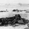 1891 January 3. The Medican [i.e. Medicine] Man. View of the slain frozen body of a Native American Lakota Sioux medicine man, Wounded Knee Creek, Pine Ridge Reservation, South Dakota. The body has clenched arms and is posed with a rifle. (Denver Public Library; Western History Collection)