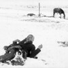 """""""Miniconjou chief Spotted Elk (aka. Bigfoot) lies dead in the snow after massacre at Wounded Knee. Trager and Kuhn, photographer/Northwestern Photo Co., Chadron, Nebraska. (Denver Public Library; Western History Collection)"""