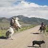 Casey and Rowdy Horse Training, 71 Ranch, Deeth, Nevada 2012. (Photo by Lucas Foglia)