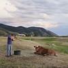 Adam Killing a Cow, Mortensen Family Farm, Afton, Wyoming 2010. (Photo by Lucas Foglia)