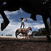 APTOPIX Mexico Charro Horses Photo Gallery