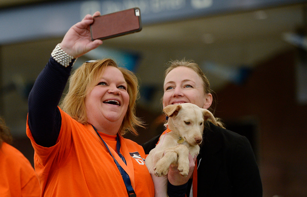 """. Jennifer Garner, left and  Heather Kaufman  do a selfie with a  puppy named \""""Pamela\""""  as the Denver International Airport hosted the DEN Puppy Bowl in the Jeppesen Terminal  on Friday, February 05, 2016. They invited puppies from the Denver Dumb Friends League to come down and frolic on a miniature football field set up in the center of the main terminal. The puppies drew employees, Broncos fans, and  travelers out to see the cuteness.  (Photo by Cyrus McCrimmon/ The Denver Post)"""