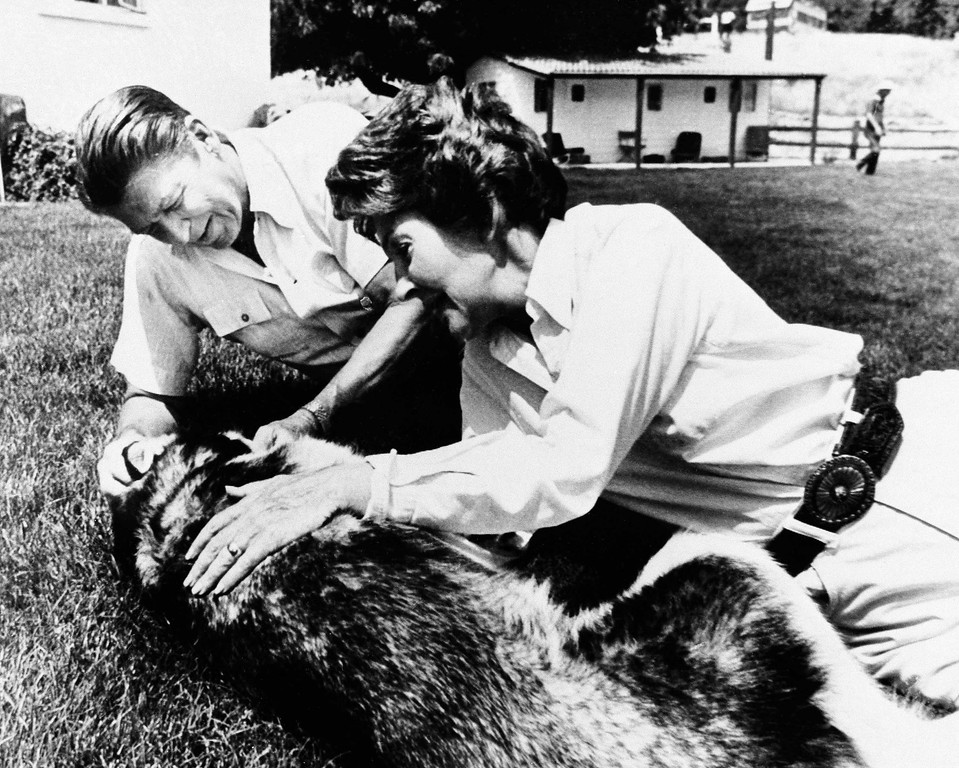 . Taca, the pet husky of Ronald Reagan and his wife Nancy, was the center of attention as they relaxed on the lawn outside their ranch home near Santa Barbara, Calif., Monday, July 27, 1976.  (AP Photo/Walter Zeboski)