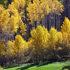 Vail Valley Golf Course 2