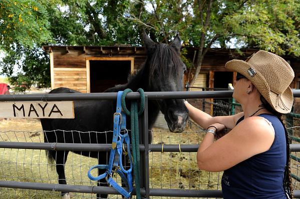 2014-10-14 Horse Protection League
