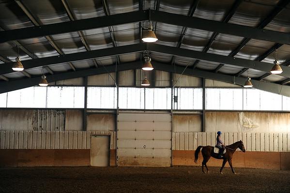 2015-01-12 Arvada Horse Park