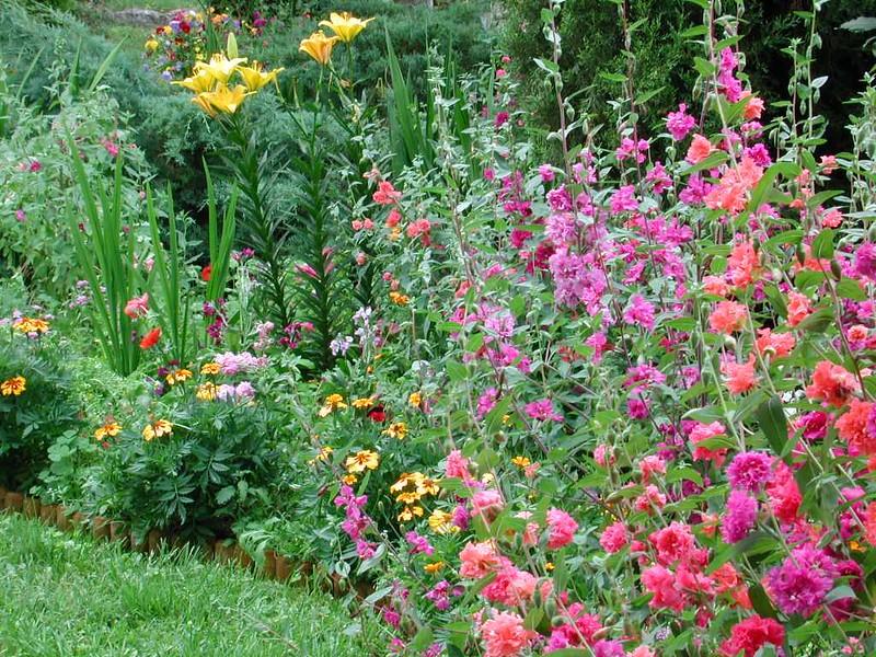 Garden2_26June01_50