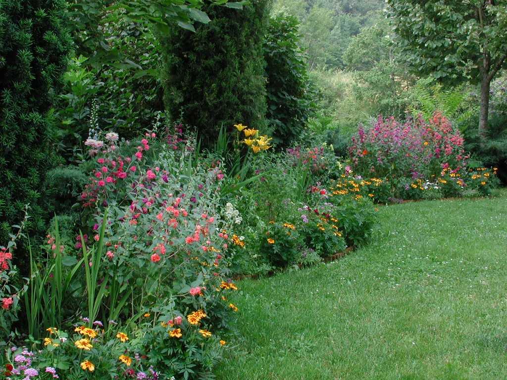 Garden3_26June01_50