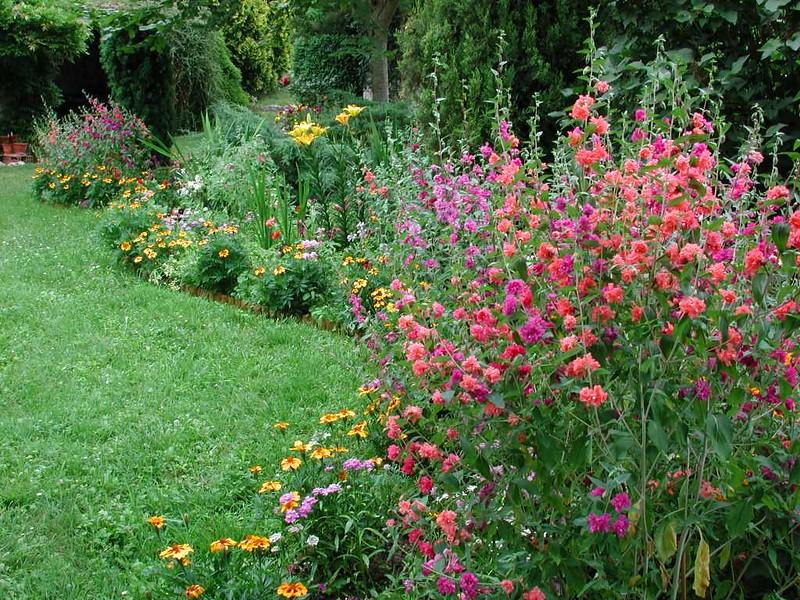 Garden1_26June01_50