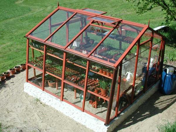 GreenhouseSeedlings2_