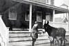 BHH feeding a mule in Browns Mills, NJ, 1909.