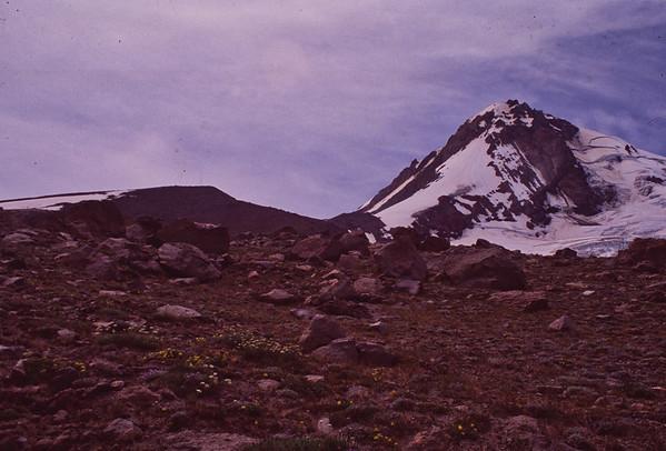 20 Cooper Spur Hike