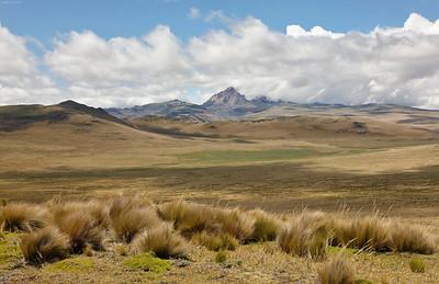Andean Paramo