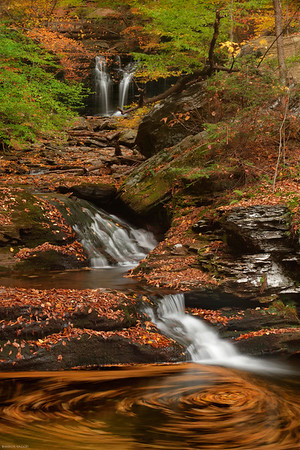 Waters Meet at Ricketts Glen, PA