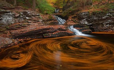 Waters Meet in Ricketts Glen, PA