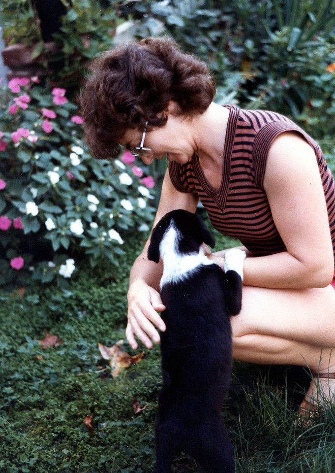 1035 Ibi Freckles 1983