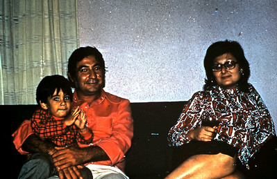 Avi, Amnon and Regin