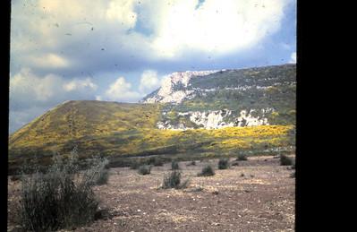 Tel Lachish, spring 1968