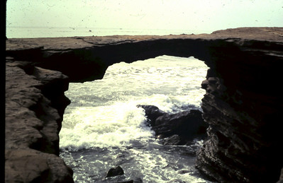 Summer 1980