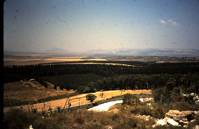 Jezreel Valley from Megiddo