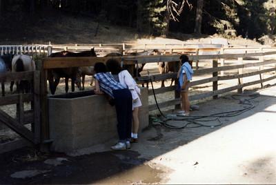2022 Yosemite 1986_09
