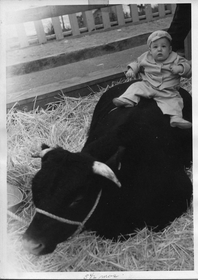 Stan 1948_05