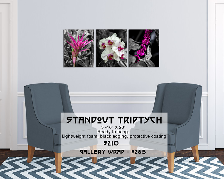 Floral_Pink_on_B&W_16X20_Triptych