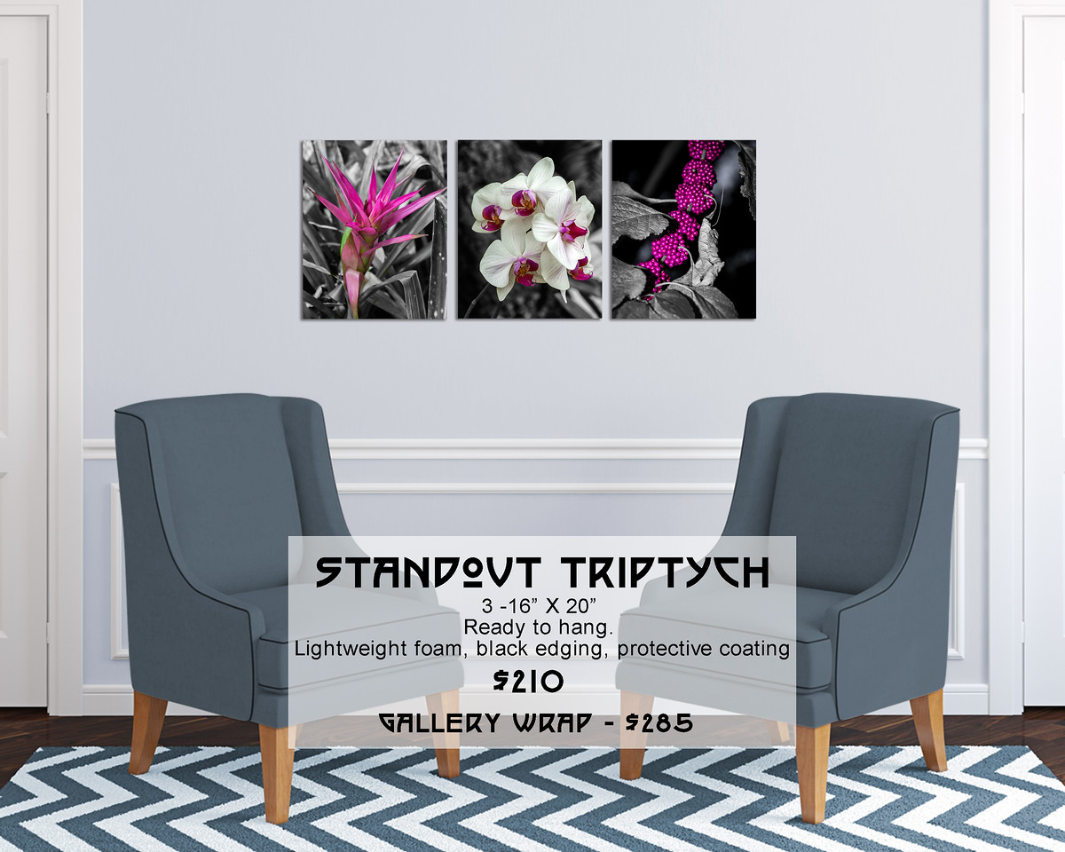 Floral_Pink_on_B&W_16X20_Triptych