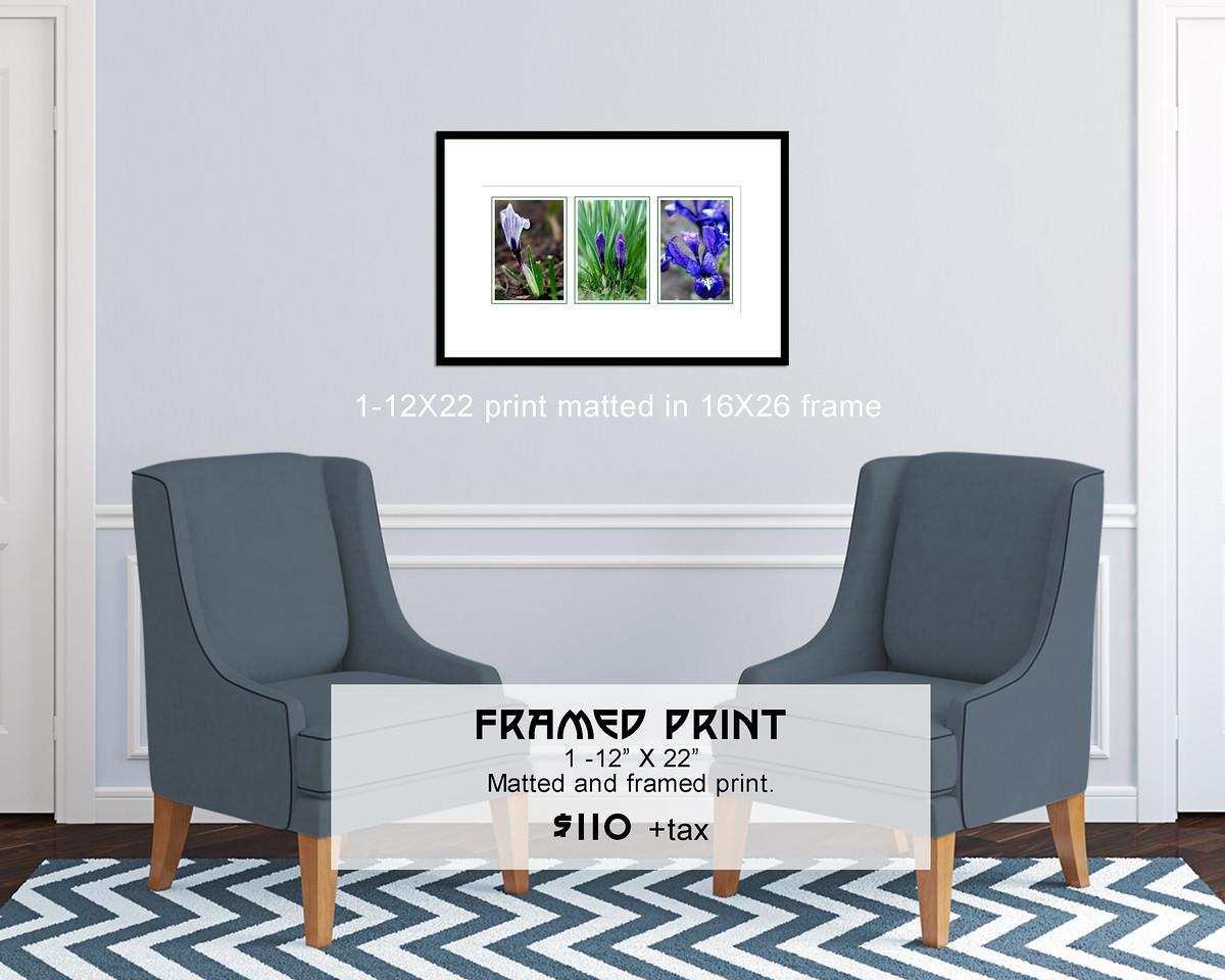 Triptych_12X22print_in_16X26_frame