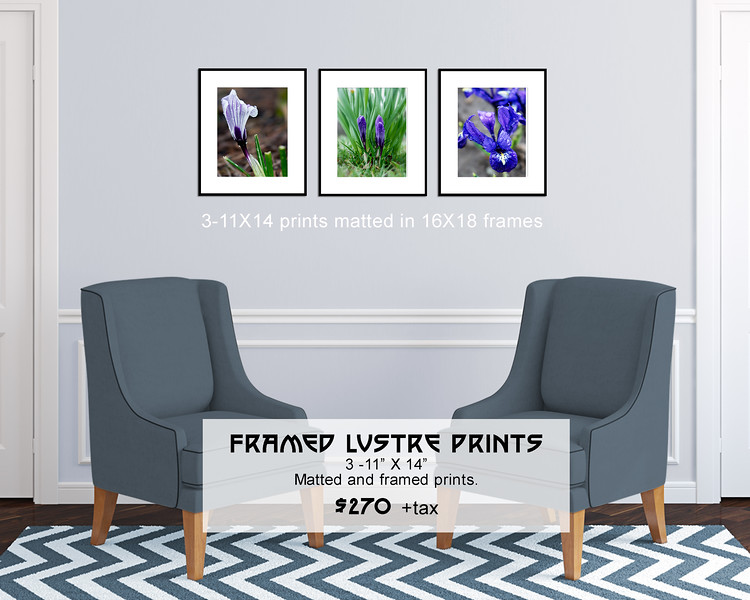 Floral_Triptych_11X14_framed_Spring