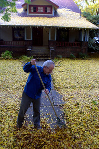 Jim Saake rakes the leaves off his walkway in front of his house on E. 1st Ave. Tuesday. - halley photo 11/21/06