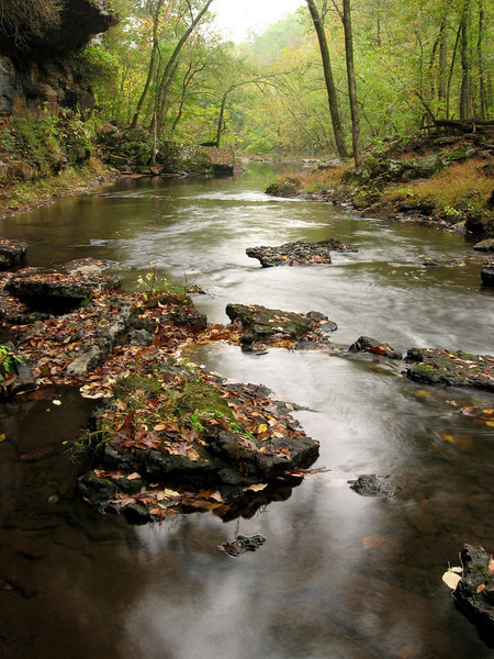 The Duck river flows lazily from the pool below Big Falls...  This area is less traveled and is home to many old mossy rocks and overhanging cliffs.