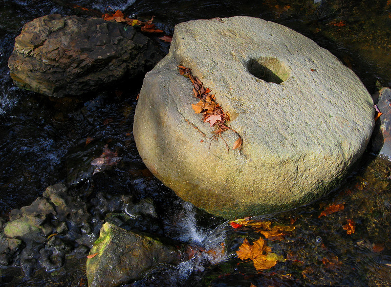 Old Mill Grinding Wheel  -  This wheel has come to rest mid-stream in the Little Duck.