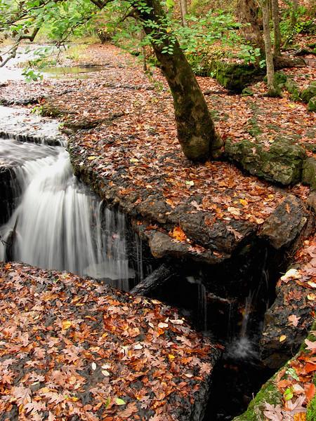A beautiful fall picnic spot above Big Falls.