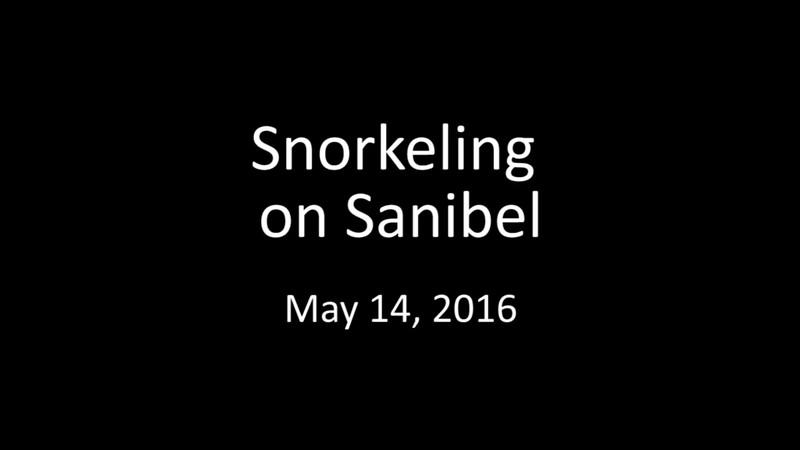Snorkeling on Sanibel