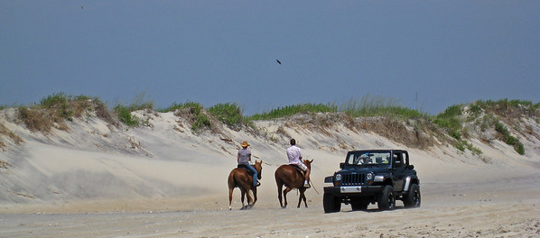 Horse power vs HORSE POWER on Oregon Inlet Beach, NC