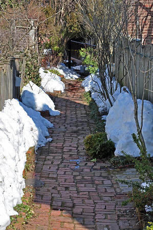A snow-laden brick path between houses