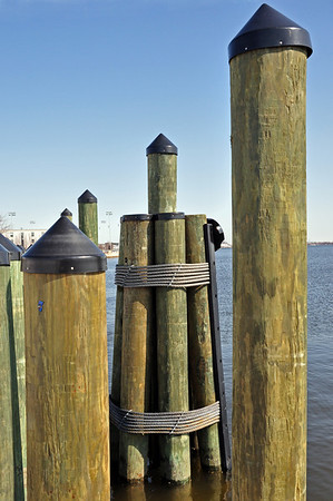 Pilings at the end of the public dock